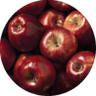 fertilizante manzana