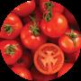 fertilizante tomate